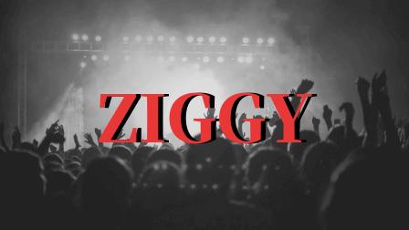 ZIGGYオリジナル,画像